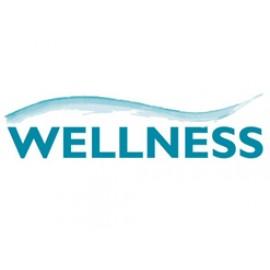 Велнес/Wellness студия